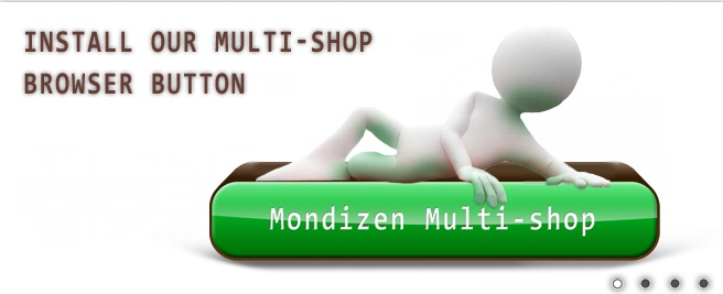 Install our multi-shop browser button